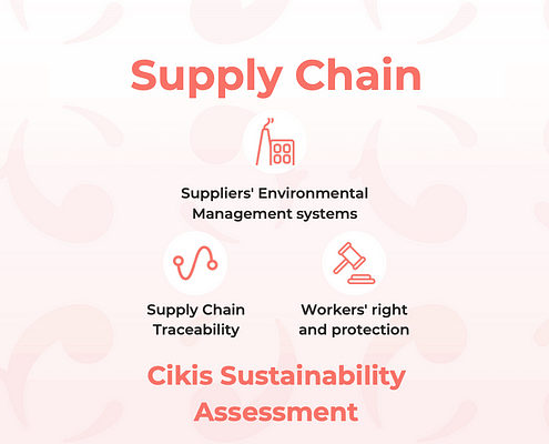 Cikis Sustainability Assessment and its categories of analysis to make fashion companies and their supply chain more sustainable